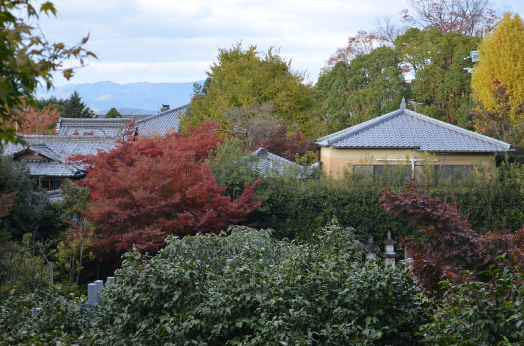 Kodaji-tempel-koyo-herbst