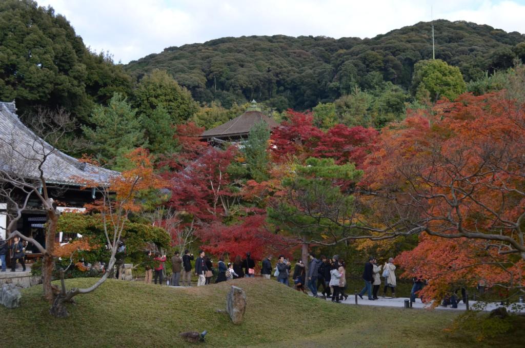 Kodaji-tempel-koyo-herbst_3