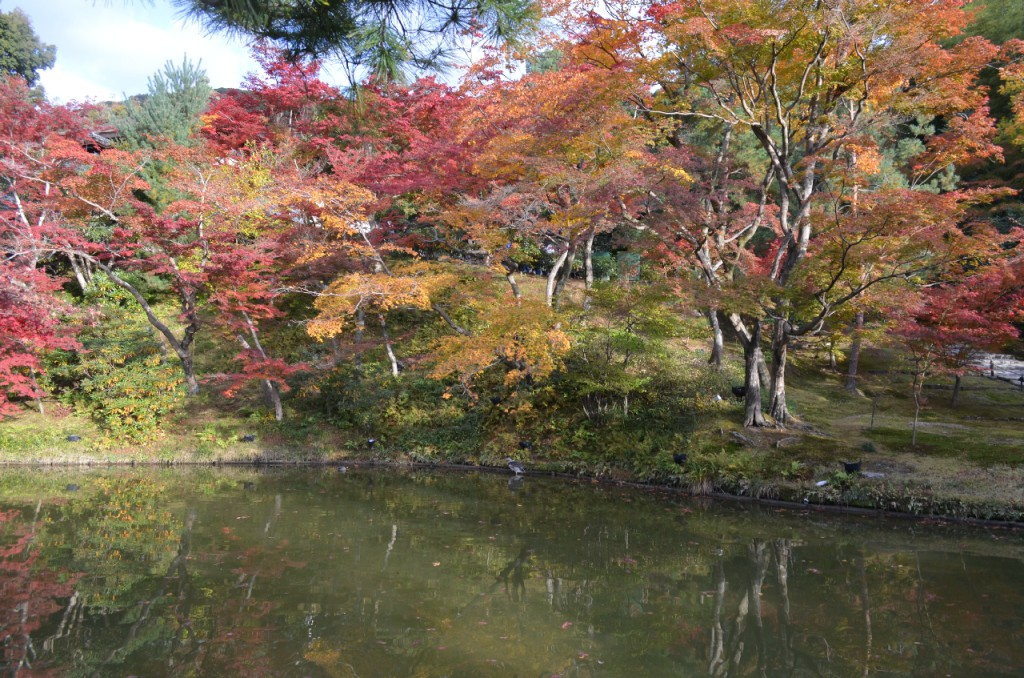 Kodaji-tempel-koyo-herbst_5