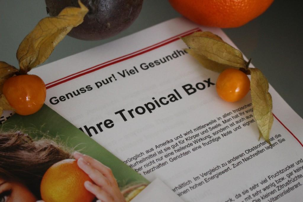 hansen-obst-obstbox-geschenkbox-test-erfahrung-2