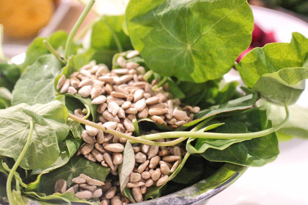 Kapuzinerkresse Pesto Rezept vegan