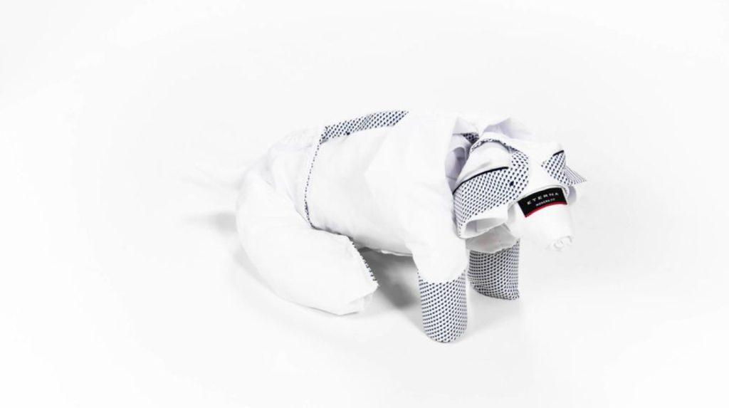 origamishirt-eternea-video-parkbank-falten-hund (3)