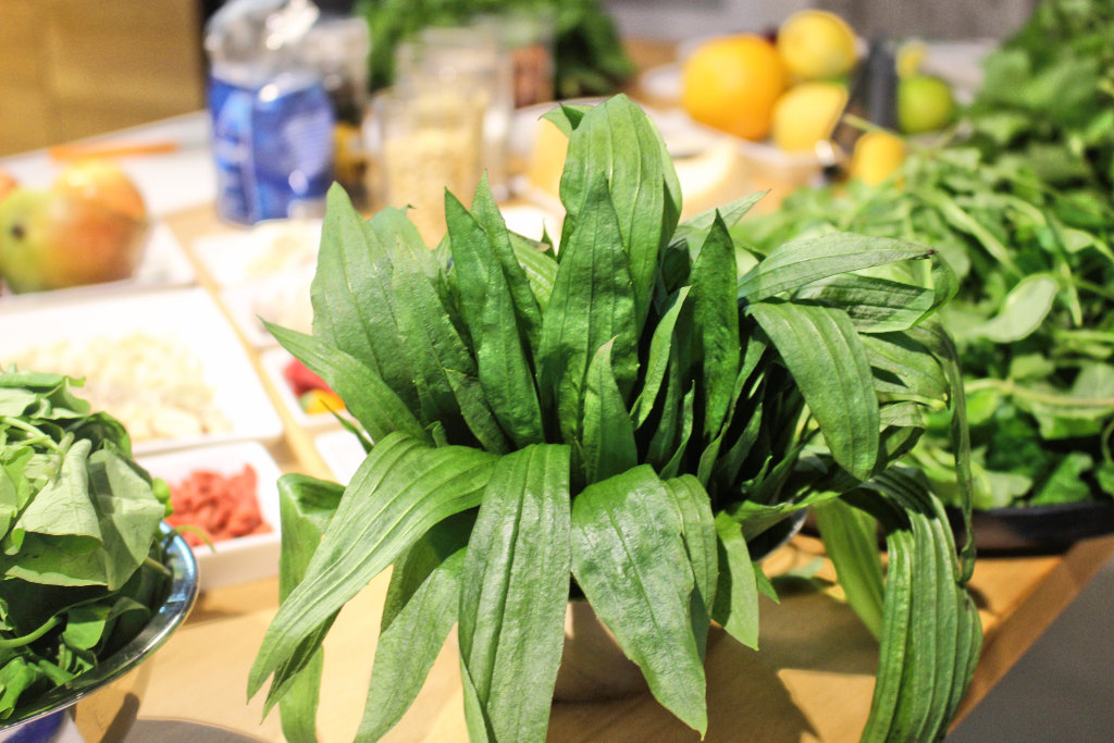 rapsoel-entdecken-verband-ufop-fooblog-day-event-pesto (5)