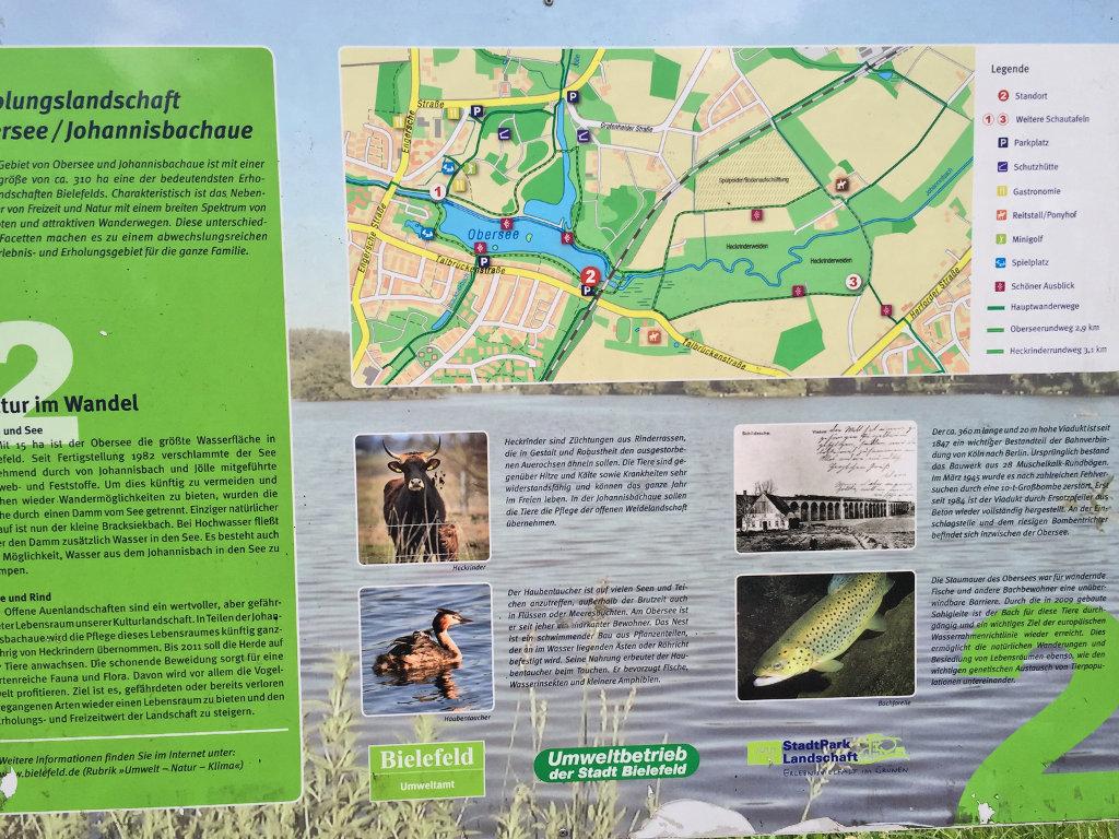GeoCaching-Bielefeld-Obersee-Rätsel-Wandern-Natur-Johannisbauaue (6)