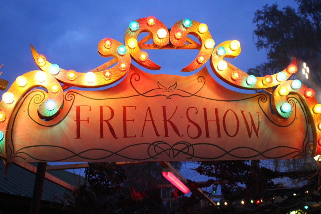 halloween-safaripark-stuckenbrock-2016-bilder-impressionen-3
