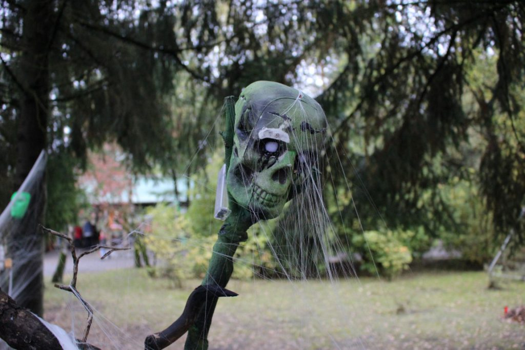 halloween-safaripark-stuckenbrock-frakshow-horror-veranstaltung-19