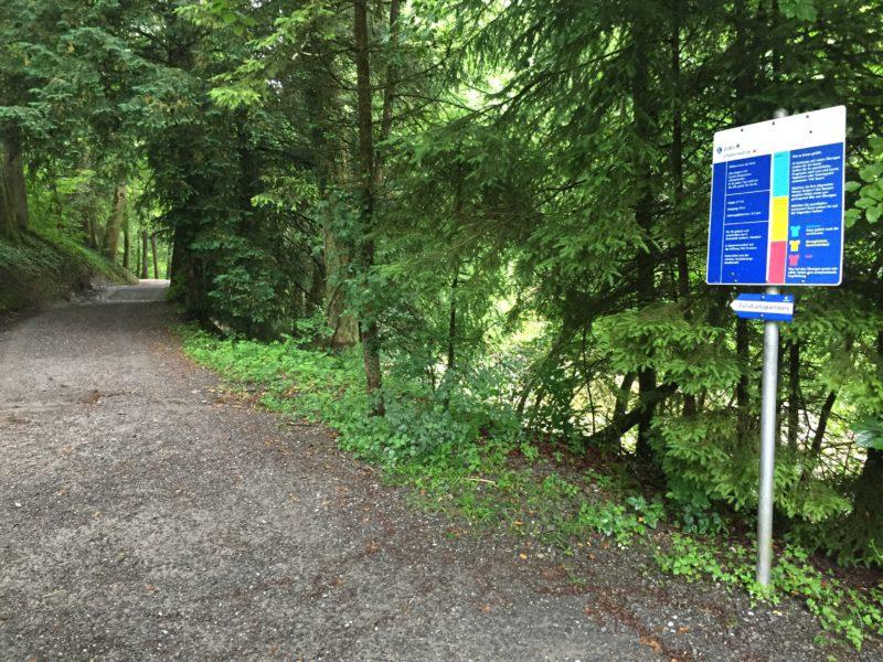 Schild mit Erläuterungen am Vitaparcours Rantelwald
