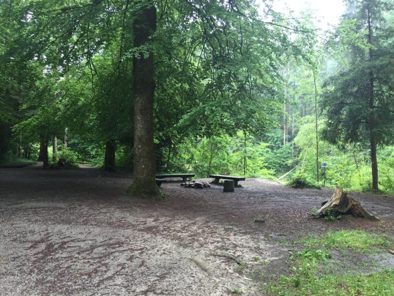Feuerstelle am Vitaparcours Rantelwald