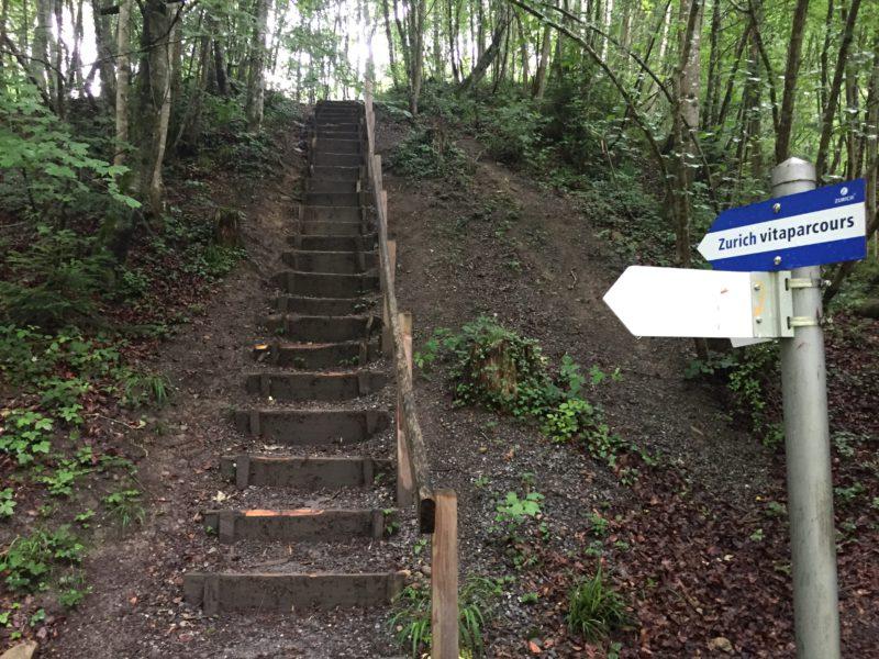 Treppe im Vitaparcours Rantelwald