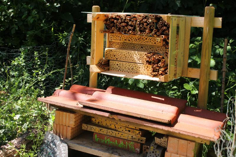 Gemeinschaftsgärten in Essen - Insektenhotel im Siepengarten