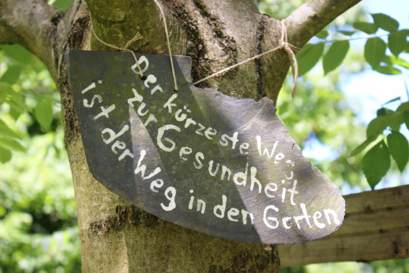 Gesund durch Gartenarbeit in den Gemeinschaftsgärten in Essen