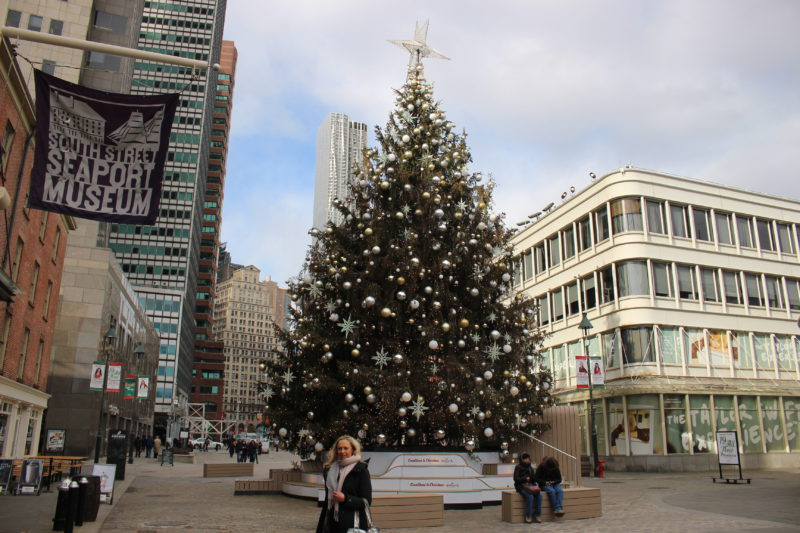 Weihnachtsbaum in New York am Seaport Museum