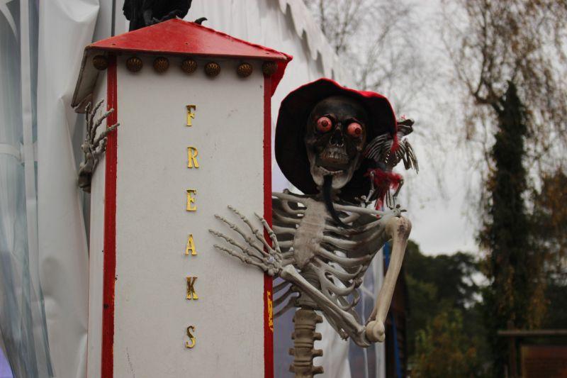 Freakshow Halloween im Safaripark