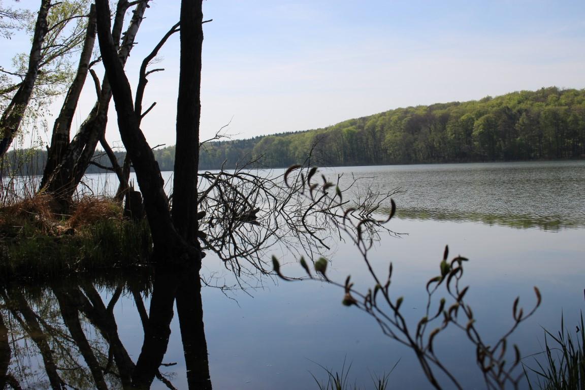 Insel Safari durch das Hinterland von Usedom - Natur erleben