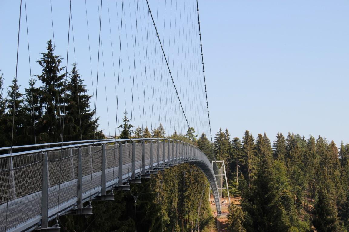 Ausflugs-Tipp auf dem Sommerberg im Nördlichen Schwazwald: Die Wildline Hängebrücke über Bad Wildbad als Nervenkitzel