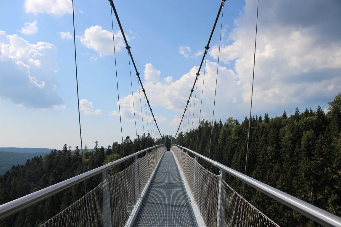Nervenkitzel pur: Die Wildline Hängebrücke über Bad Wildbad als AusflugTipp auf dem Sommerberg im Nördlichen Schwazwald