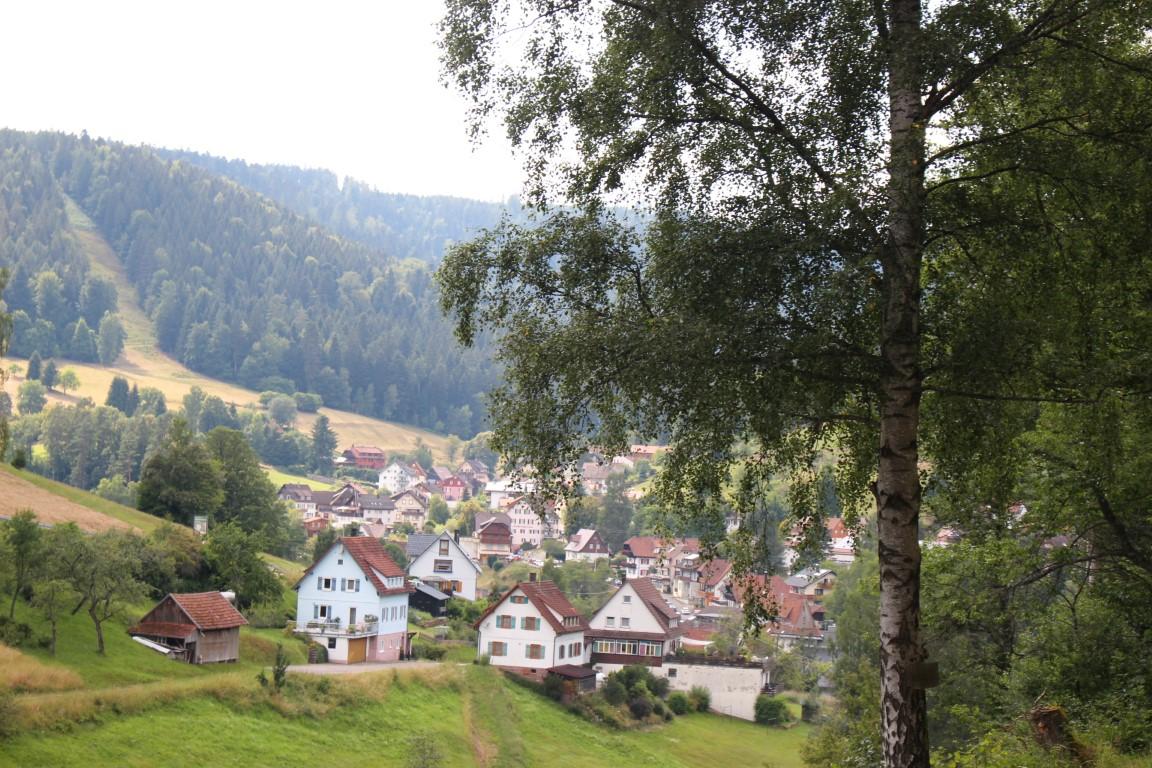 Heidelbeerdorf Enzklösterle im Schwarzwald