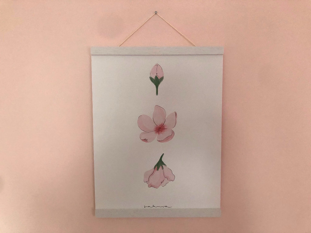 Poster Sakura Japanische Kirschblüte